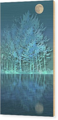 Wood Print featuring the photograph 4510 by Peter Holme III