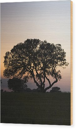 Alentejo Wood Print by Andre Goncalves