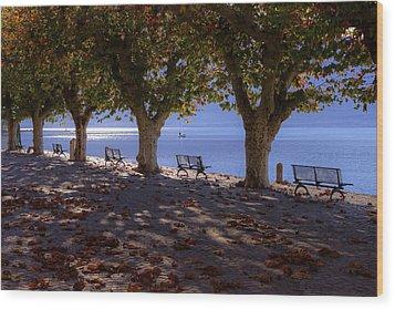 Ascona - Lake Maggiore Wood Print by Joana Kruse