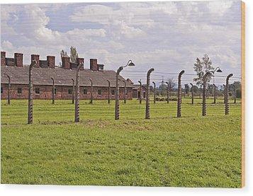 Auschwitz Birkenau Concentration Camp. Wood Print by Fernando Barozza
