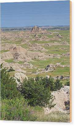 Badlands National Park South Dakota Wood Print by Louise Heusinkveld