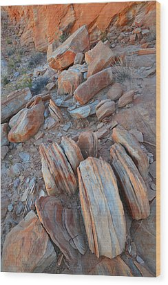 Wood Print featuring the photograph Colorful Cove In Valley Of Fire by Ray Mathis
