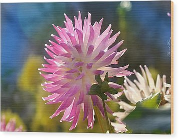 Wood Print featuring the photograph Flower Edition by Bernd Hau