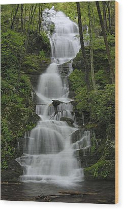Forest Waterfall Wood Print by Stephen  Vecchiotti