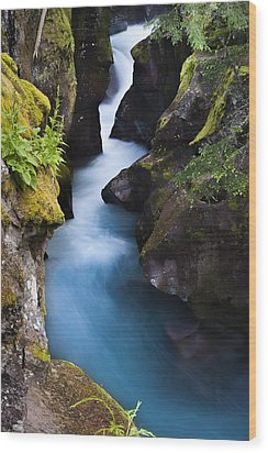 Wood Print featuring the photograph Glacier National Park 100th Anniversery by Kevin Blackburn