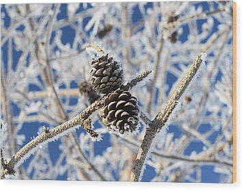 Hoar Frost Wood Print