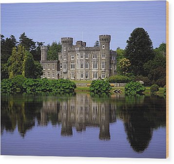Johnstown Castle, Co Wexford, Ireland Wood Print by The Irish Image Collection