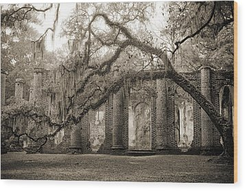 Old Sheldon Church Ruins Wood Print by Dustin K Ryan
