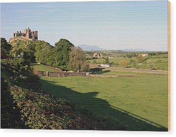 Rock Of Cashel Wood Print by John Quinn