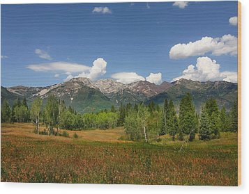 Rocky  Mountains Wood Print