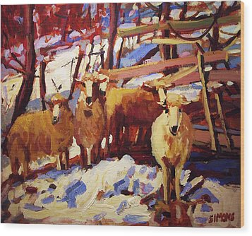 5 Sheep Wood Print by Brian Simons