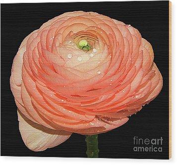 Spring Flower Wood Print by Elvira Ladocki