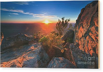 St Mary Peak Sunrise Wood Print by Bill  Robinson