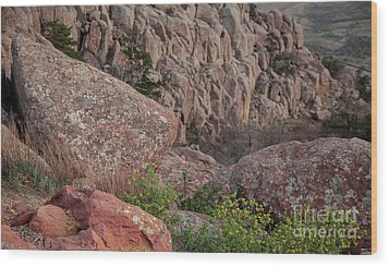 Wood Print featuring the photograph Wichita Mountains by Iris Greenwell