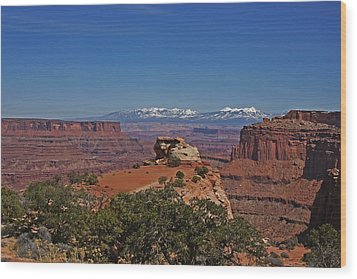 Canyonlands National Park Wood Print