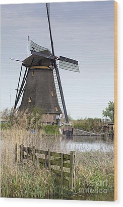 Mills In Netherlands Wood Print by Andre Goncalves