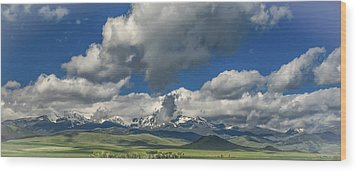 #5773 - Southwest Montana Wood Print