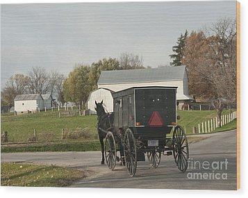 Amish Buggy Wood Print
