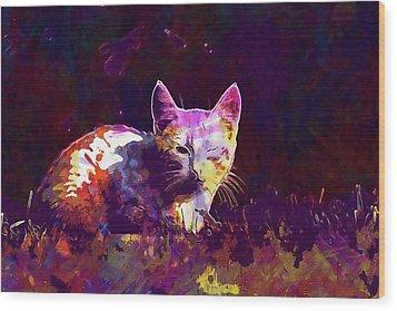 Wood Print featuring the digital art Cat Eye Injury One Eye Village  by PixBreak Art