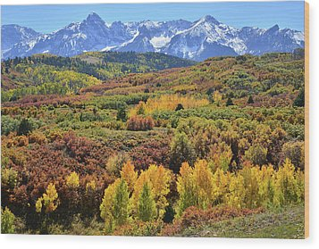 Wood Print featuring the photograph Dallas Divide by Ray Mathis
