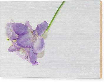 Purple Freesia Wood Print by Elvira Ladocki