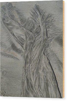 Sand Reels Wood Print by Joe  Palermo