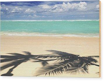 Tropical Beach Wood Print by Elena Elisseeva