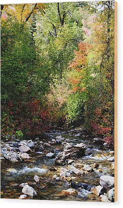 Rocky Mountain Fall Wood Print