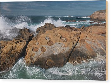 Point Lobos Concretions Wood Print by Glenn Franco Simmons