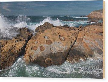 Point Lobos Concretions Wood Print