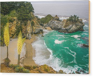 #7842 - Big Sur, California Wood Print