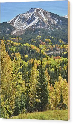 Wood Print featuring the photograph Red Mountain Pass by Ray Mathis