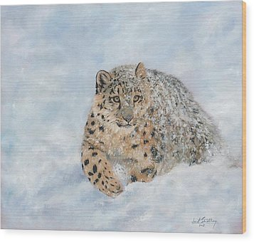 Snow Leopard Wood Print by David Stribbling