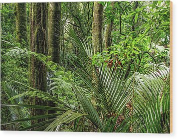 Wood Print featuring the photograph Tropical Jungle by Les Cunliffe