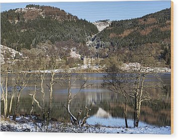 Trossachs Scenery In Scotland Wood Print