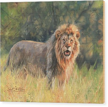 Wood Print featuring the painting Lion by David Stribbling
