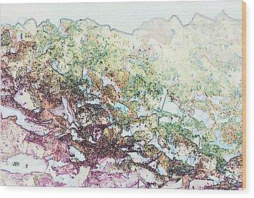 9708 Wood Print by Jim Simms