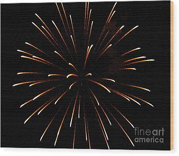 A 4th Of July Flower Wood Print by Robert Wolverton Jr