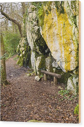 A Bench In The Woods Wood Print by Rae Tucker