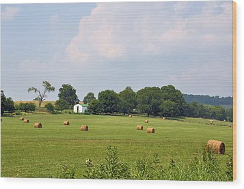 A Breath Of Fresh Air Wood Print by Jan Amiss Photography