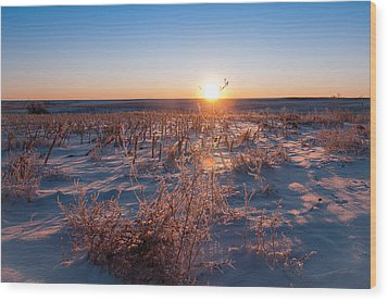 Wood Print featuring the photograph A Cold December Morning by Monte Stevens
