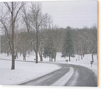 Wood Print featuring the photograph A Cold Winter's Day by Skyler Tipton