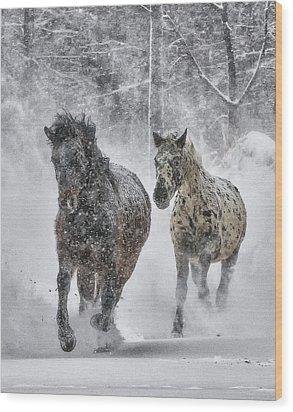 Wood Print featuring the photograph A Cold Winter's Run by Wade Aiken