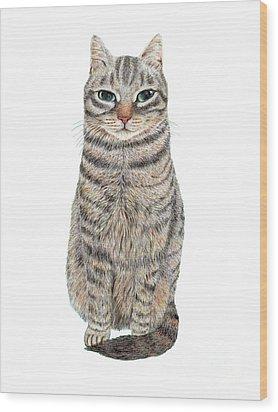 A Cool Tabby Wood Print