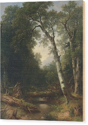 A Creek In The Woods Wood Print