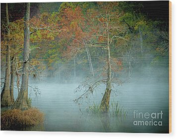 Wood Print featuring the photograph A Dancing Cypress by Iris Greenwell