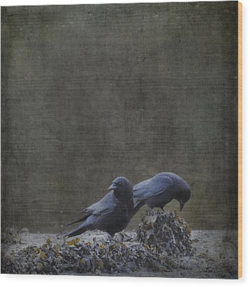 Wood Print featuring the photograph Blackbirds At The Beach by Sally Banfill