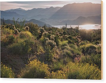 Wood Print featuring the photograph A Desert Spring Morning  by Saija Lehtonen