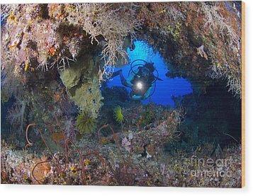 A Diver Peers Through A Coral Encrusted Wood Print by Steve Jones