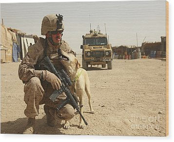 A Dog Handler Posts Security With An Wood Print by Stocktrek Images